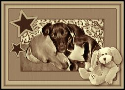 Bella And Pepper6