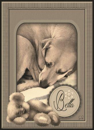 Bella And Pepper9