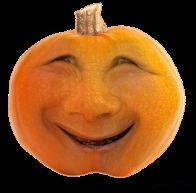 Pumpkin8