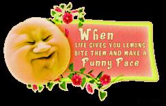 SillyFruit9