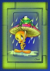 Tweety in the Rain