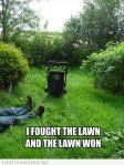 874d1d8107161b81313fa3d7689c5f46–mowing-grass-grass-mower